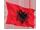 albaniens flag