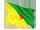 fransk guyanas flag