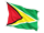 guyanas flag