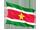 surinams flag