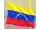 venezuelas flag