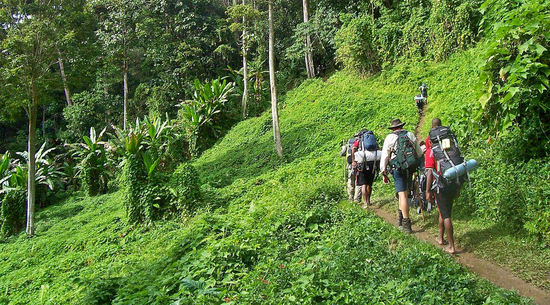 Kokoda Trail i Papua Ny-Guinea - All Exclusive Travel